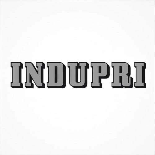 INDUPRI Tore & Zaun GmbH